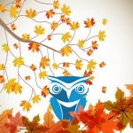 fall_owl_goc